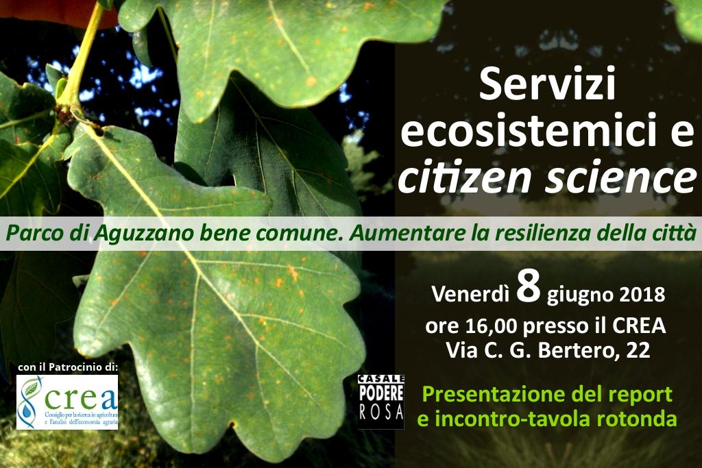 Valutazione dei servizi ecosistemici nel Parco di Aguzzano – Presentazione report venerdì 8 giugno